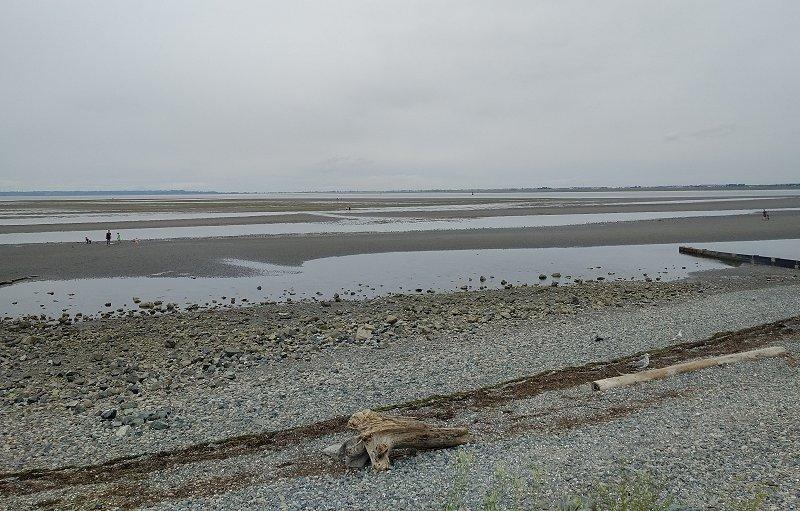 Crescent Beach 3 Low Tide