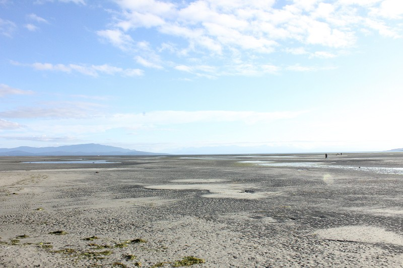 Rathtrevor Beach Low Tide