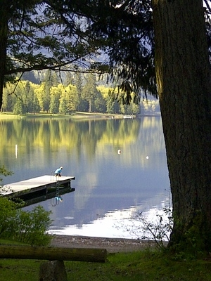 Sunnyside Campground Cultus Lake Rv Campground Accommodation