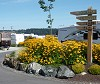 Oceanside | A Parkbridge Camping & RV Resort, Saanichton